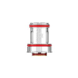 Sun Tea Pêche Hibiscus
